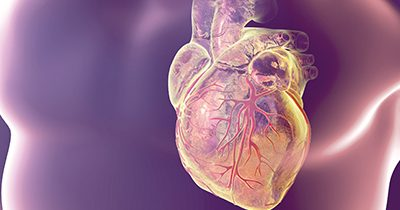 Heart Valve Disease: 5 Symptoms You Shouldn't Ignore