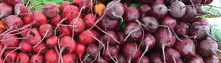 Vegetable of the Month: Beets!