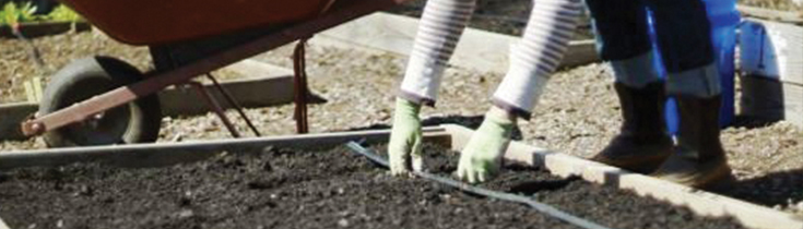 Preparing Garden Soils for Spring Planting